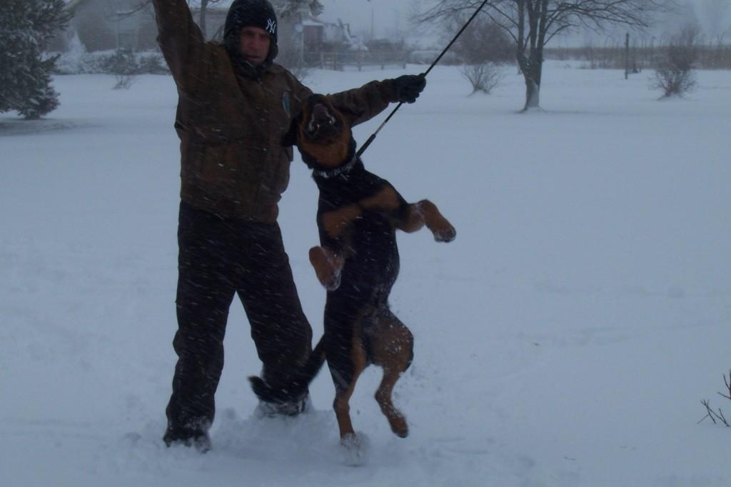 ocho snow day Dec 2012 001