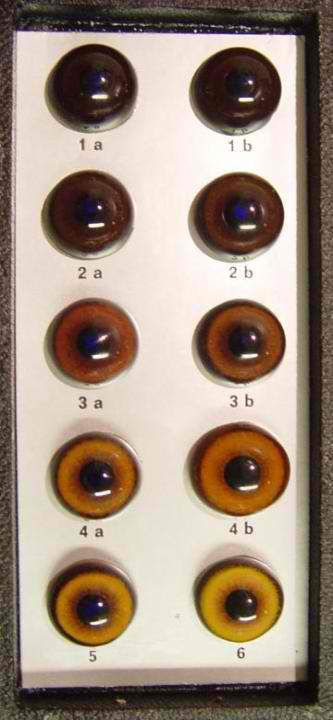 eyecolorchart1