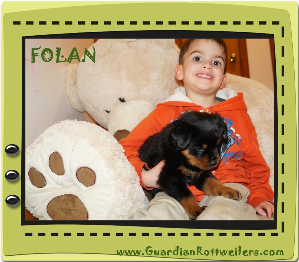 folan12