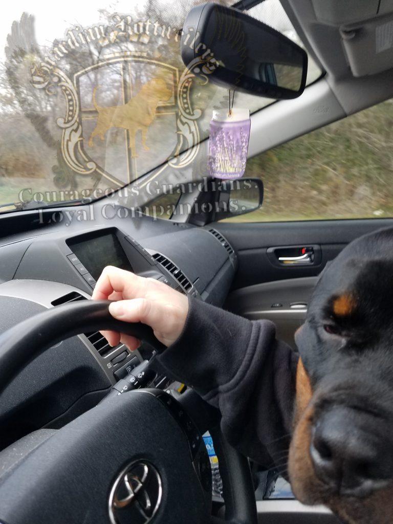 puck_car05