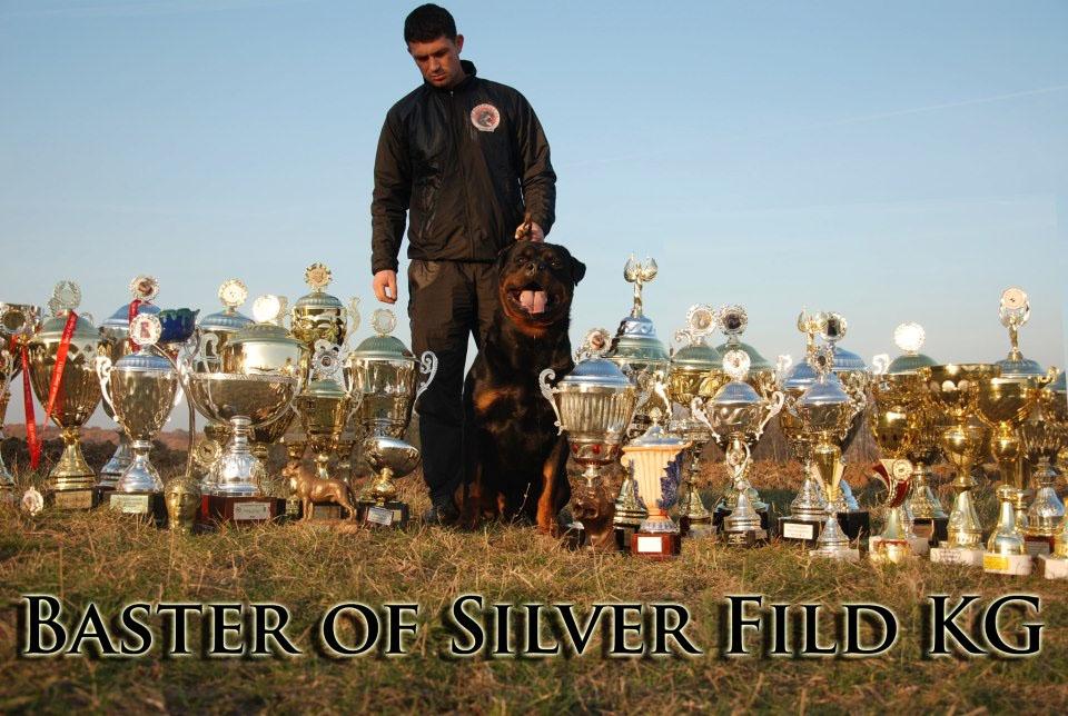 Multi CH Baster of Silver Fild KG