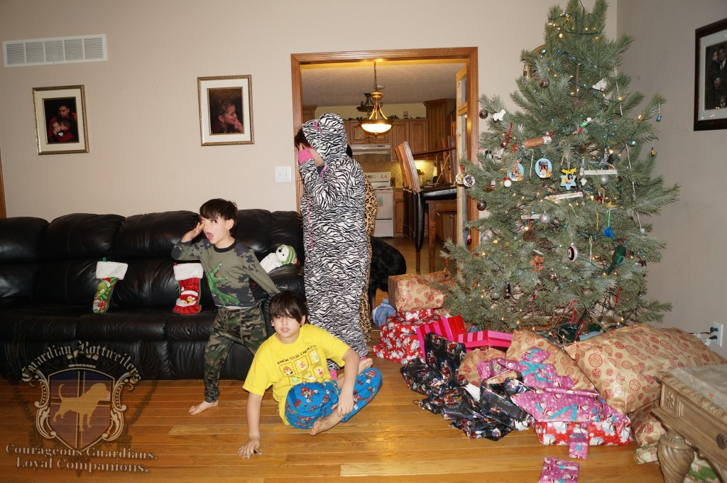 ChristmasMorning_2014_01