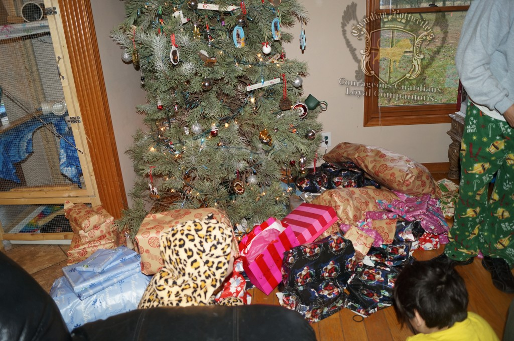ChristmasMorning_2014_15