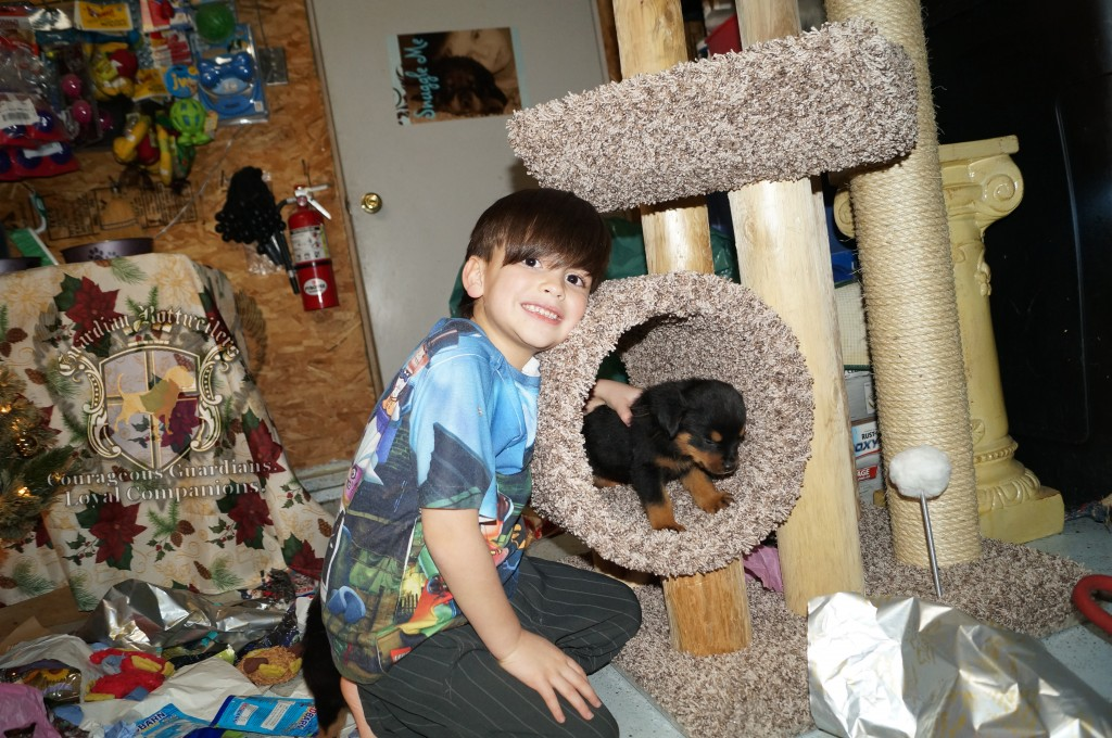 ChristmasMorning_2014_9922