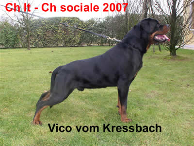 Vico_vom_kressbach
